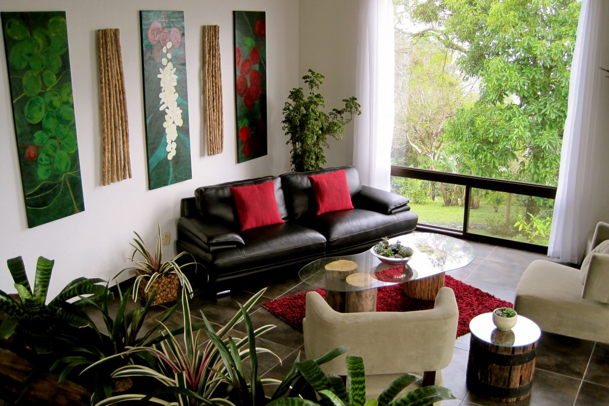 Beautify Your Noosaville Home with Indoor Plants